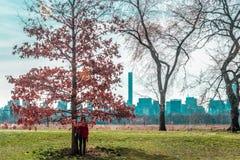 Muchacha delante de árboles en el Central Park en ci de Manhattan, Nueva York Fotografía de archivo