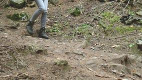 Muchacha delgada que camina a lo largo de la trayectoria en el turismo conífero del bosque en la reserva del Cáucaso Primer de un almacen de video
