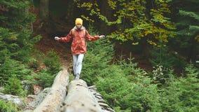 Muchacha delgada que camina a lo largo de un registro a través de un río de la montaña en el turismo del bosque en la reserva del almacen de video