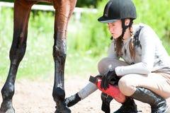 Muchacha ecuestre adolescente que comprueba para saber si hay lesión de la pierna del caballo de bahía Fotografía de archivo libre de regalías