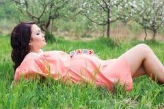 Muchacha embarazada con los ladrillos de madera de los bebés en su vientre Fotografía de archivo libre de regalías
