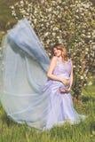 Muchacha embarazada feliz en jardín del flor de la manzana Imagenes de archivo
