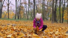 Muchacha emocionada que lanza follaje caido del otoño en parque almacen de metraje de vídeo