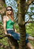Muchacha en árbol Fotos de archivo