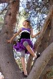 Muchacha en árbol Foto de archivo libre de regalías