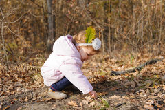 Muchacha en Autumn Meadow Fotos de archivo