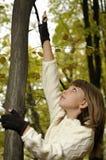 Muchacha en bosque Fotos de archivo