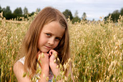 Muchacha en campo de maíz Foto de archivo libre de regalías