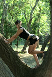 Muchacha en el árbol Fotografía de archivo
