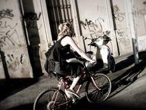 Muchacha en el bicy Foto de archivo libre de regalías