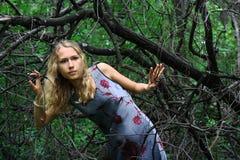 Muchacha en el bosque Foto de archivo