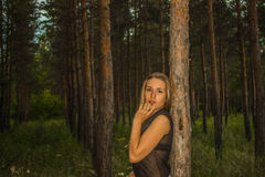 Muchacha en el bosque Foto de archivo libre de regalías