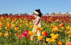 Muchacha en el campo de flor fotos de archivo