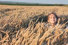 Muchacha en el campo de trigo imagen de archivo