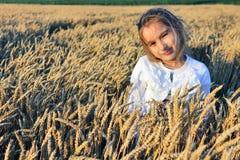 Muchacha en el campo de trigo foto de archivo