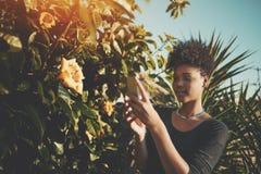 Muchacha en el jardín que toma la foto del brote de flor Fotografía de archivo