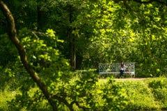 Muchacha en el parque en el banco que lee un libro Foto de archivo