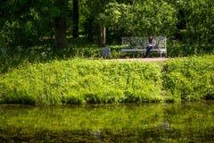 Muchacha en el parque en el banco que lee un libro Imagen de archivo