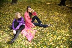 Muchacha en el parque del otoño Fotos de archivo