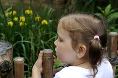 Muchacha en el parque zoológico Imagen de archivo