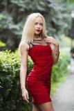 Muchacha en el vestido rojo que presenta en naturaleza Imagen de archivo libre de regalías