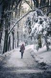 Muchacha en invierno Imagenes de archivo