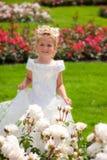 Muchacha en jardín de rosas Imagenes de archivo