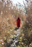 Muchacha en la naturaleza en una capa roja Foto de archivo