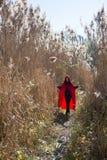 Muchacha en la naturaleza en una capa roja fotos de archivo