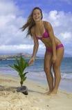 Muchacha en la playa con la palmera del bebé Foto de archivo