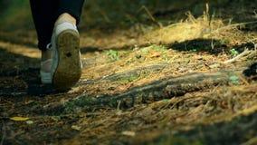 Muchacha en las zapatillas de deporte que camina en un sendero almacen de metraje de vídeo