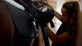Muchacha en los sistemas estables la silla de montar en el caballo la muchacha fija prishugi almacen de video