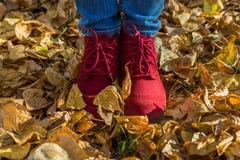 Muchacha en los zapatos rojos que se colocan en las hojas caidas Foto de archivo