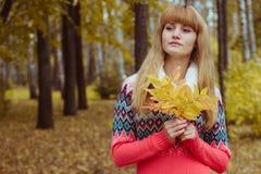 Muchacha en otoño colorido del parque Imagen de archivo libre de regalías