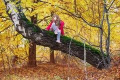 Muchacha en parque del otoño Fotos de archivo libres de regalías