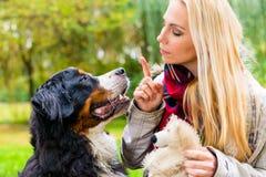 Muchacha en parque del otoño que entrena a su perro en obediencia Fotos de archivo
