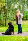 Muchacha en parque del otoño que entrena a su perro en obediencia Fotografía de archivo