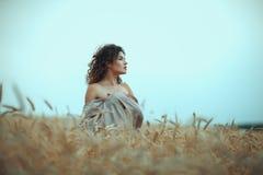 Muchacha en perfil un campo del trigo Fotografía de archivo libre de regalías