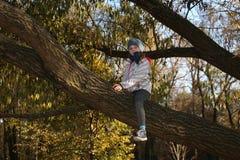 Muchacha en un árbol Imágenes de archivo libres de regalías