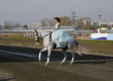 Muchacha en un caballo Foto de archivo libre de regalías