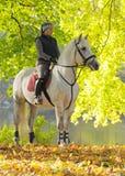 Muchacha en un caballo blanco Fotos de archivo libres de regalías