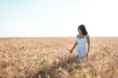 Muchacha en un campo blanco del vestido, reconstrucción al aire libre del trigo, vestido hermoso El caminar en el campo en el ver Fotos de archivo libres de regalías
