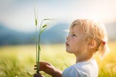 Muchacha en un campo de trigo Imagen de archivo libre de regalías