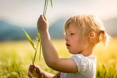 Muchacha en un campo de trigo Fotos de archivo