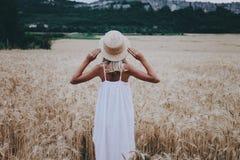 Muchacha en un campo de trigo Visión posterior Foto de archivo libre de regalías