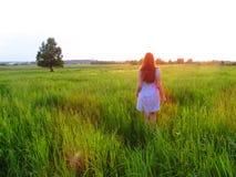 Muchacha en un campo en el amanecer Imágenes de archivo libres de regalías