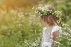 Muchacha en un paseo en un d?a de verano brillante Retrato de una ni?a con una guirnalda de manzanillas en su cabeza imagen de archivo libre de regalías