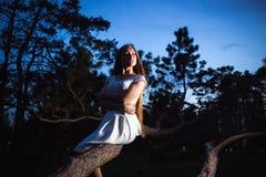 Muchacha en un vestido blanco en la noche del misterio del bosque de hadas Imágenes de archivo libres de regalías