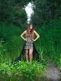 Muchacha en un vestido de noche negro en la madera Fotografía de archivo libre de regalías