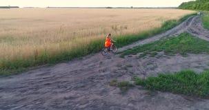 Muchacha en un vestido que monta una bicicleta a lo largo de los campos de trigo Tiroteo en un abejón Paisaje hermoso de una altu metrajes